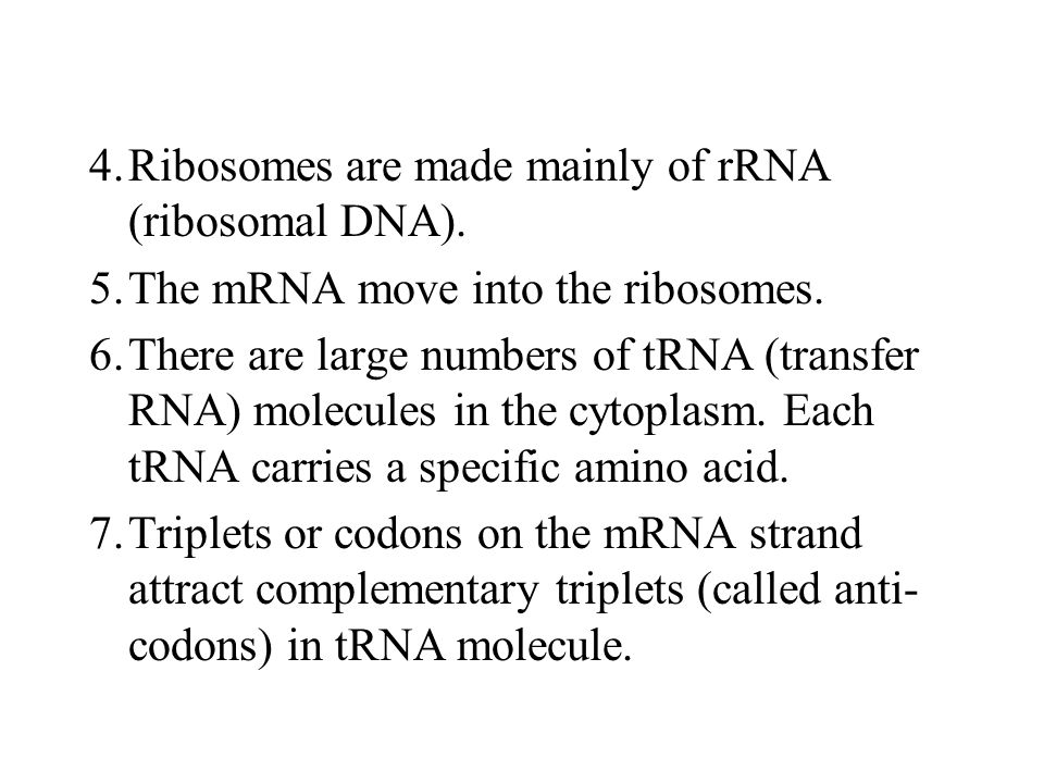 4. Ribosomes are made mainly of rRNA (ribosomal DNA).