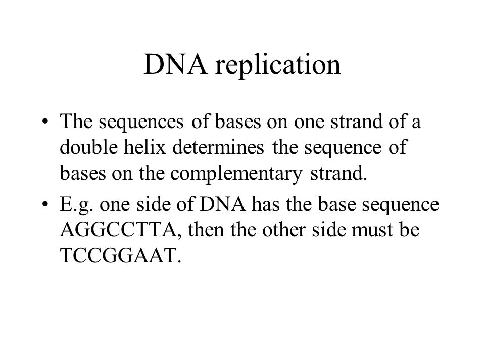 DNA replication The sequences of bases on one strand of a double helix determines the sequence of bases on the complementary strand.