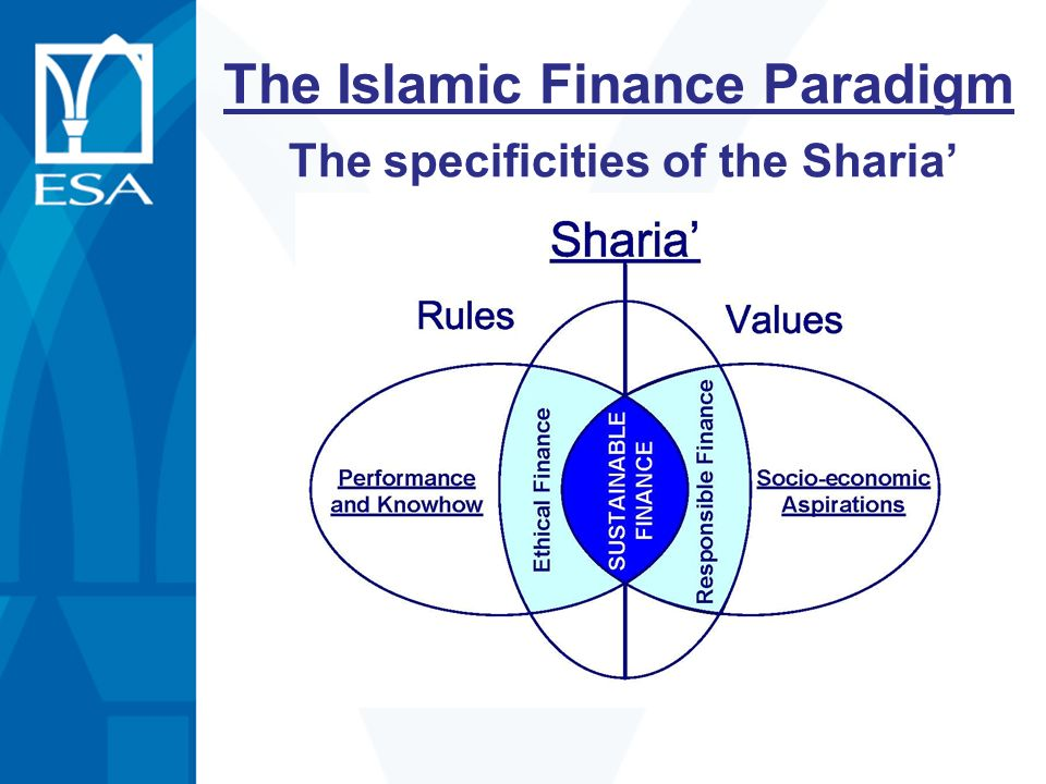 The Islamic Finance Paradigm The specificities of the Sharia'