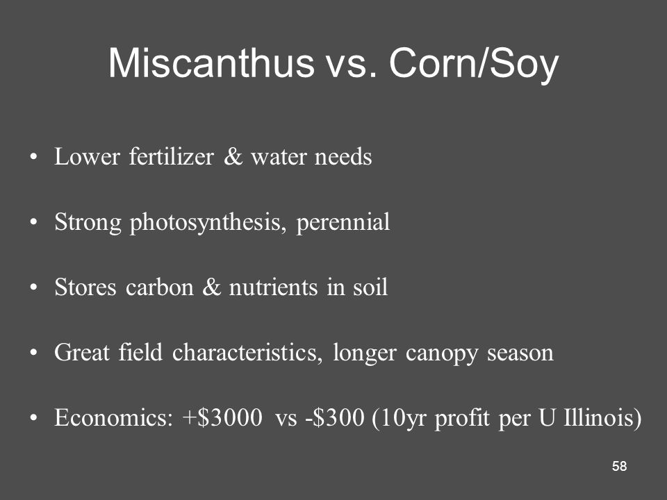 Miscanthus vs. Corn/Soy