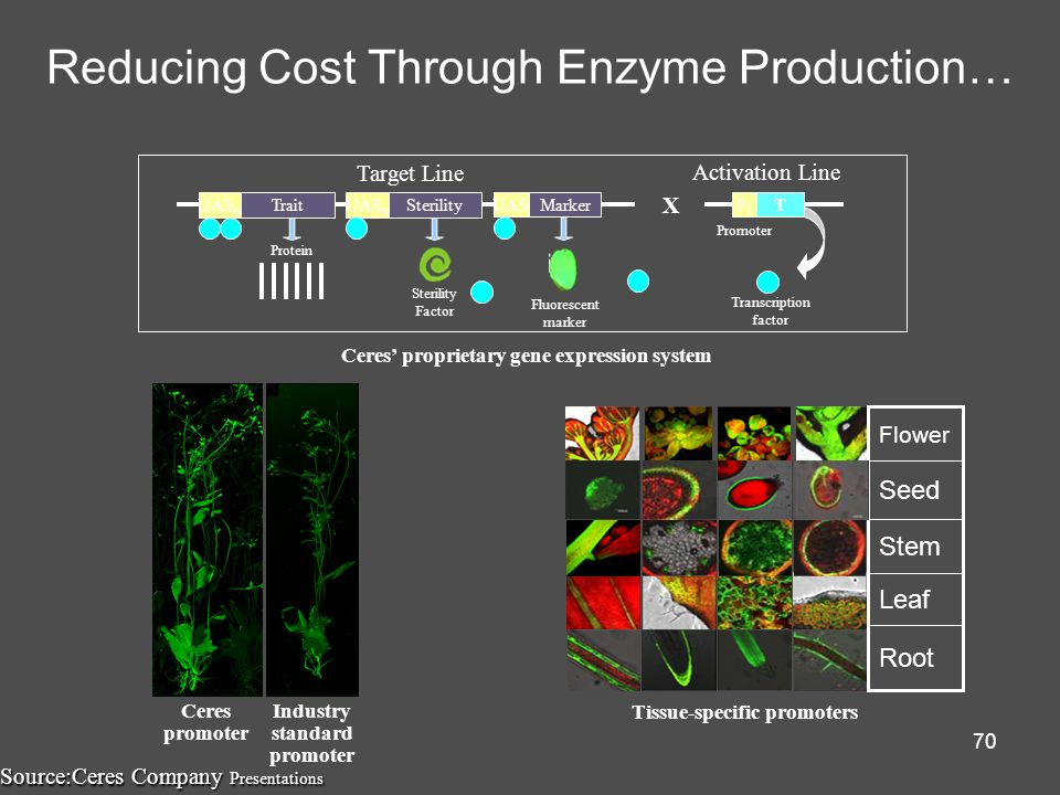 Reducing Cost Through Enzyme Production…