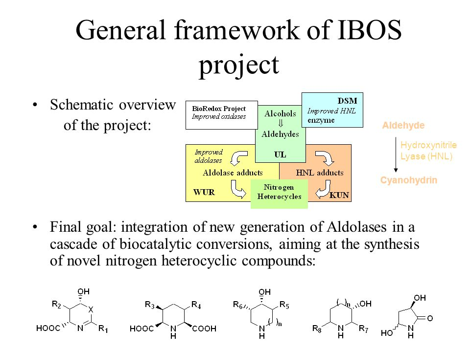 General framework of IBOS project