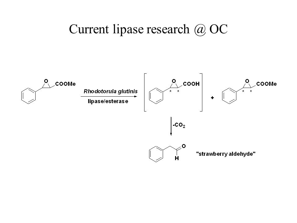 Current lipase research @ OC
