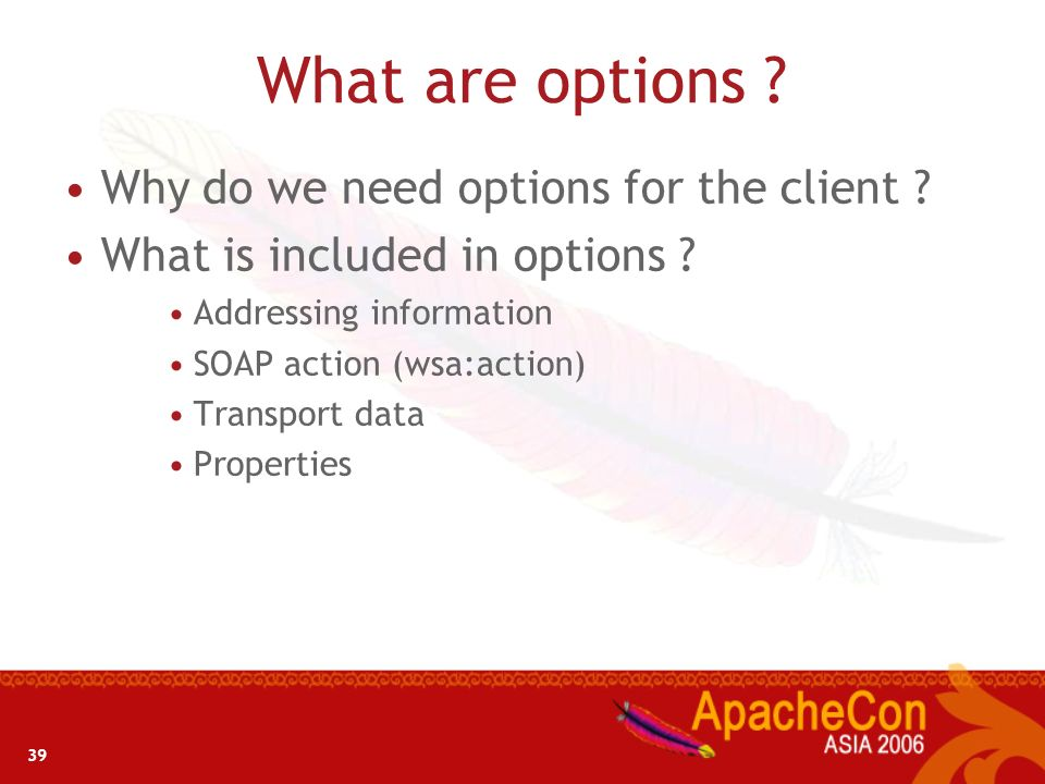 What are options Why do we need options for the client