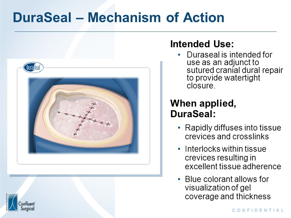 DuraSeal – Mechanism of Action