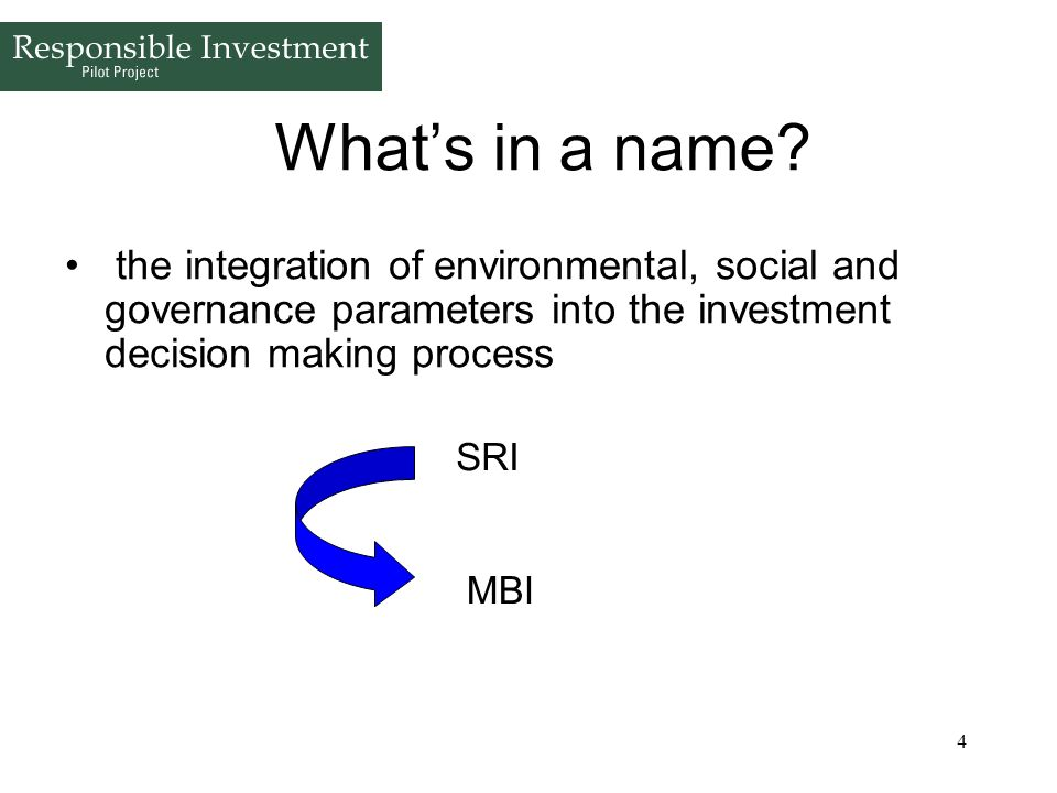 What's in a name the integration of environmental, social and governance parameters into the investment decision making process.