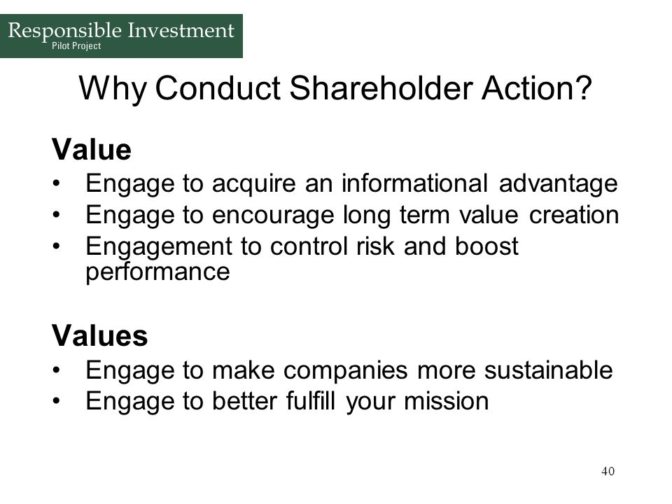 Why Conduct Shareholder Action