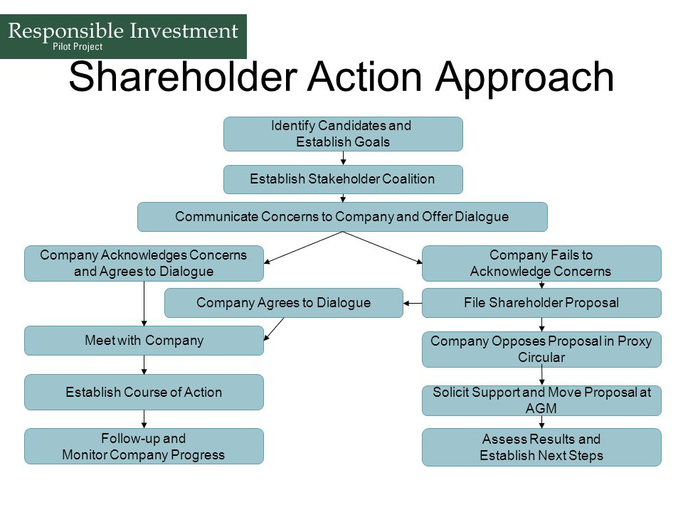 Shareholder Action Approach