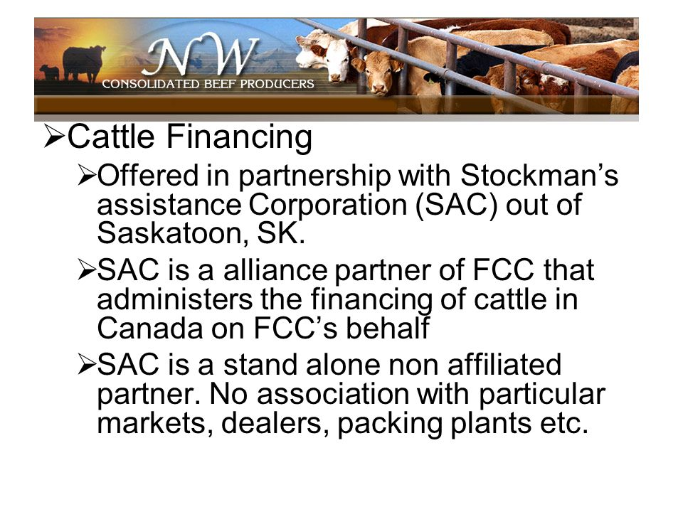 Cattle FinancingOffered in partnership with Stockman's assistance Corporation (SAC) out of Saskatoon, SK.