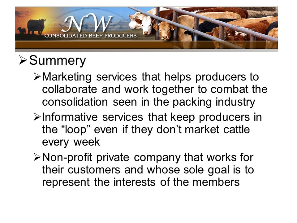 Summery Marketing services that helps producers to collaborate and work together to combat the consolidation seen in the packing industry.
