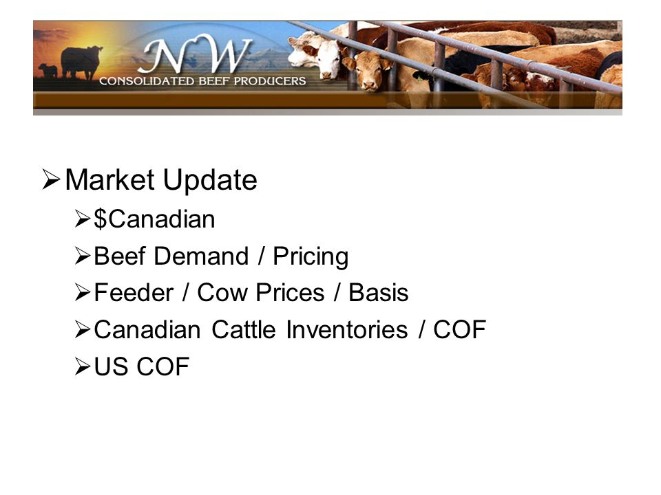 Market Update $Canadian Beef Demand / Pricing