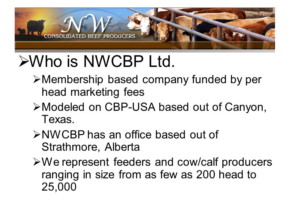 Who is NWCBP Ltd.Membership based company funded by per head marketing fees. Modeled on CBP-USA based out of Canyon, Texas.