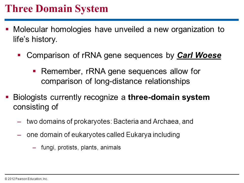 Three Domain System Molecular homologies have unveiled a new organization to life's history. Comparison of rRNA gene sequences by Carl Woese.