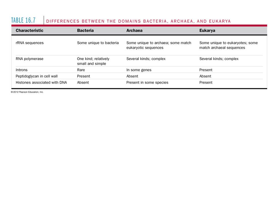 Table 16.7 Differences between the domains Bacteria, Archaea, and Eukarya