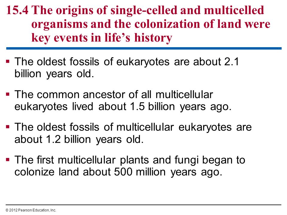 15.4 The origins of single-celled and multicelled organisms and the colonization of land were key events in life's history