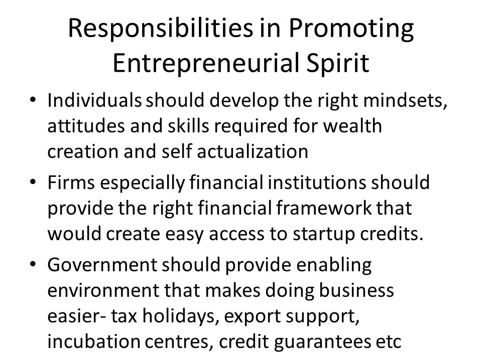 Responsibilities in Promoting Entrepreneurial Spirit