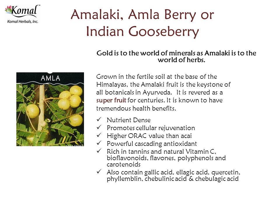 Amalaki, Amla Berry or Indian Gooseberry