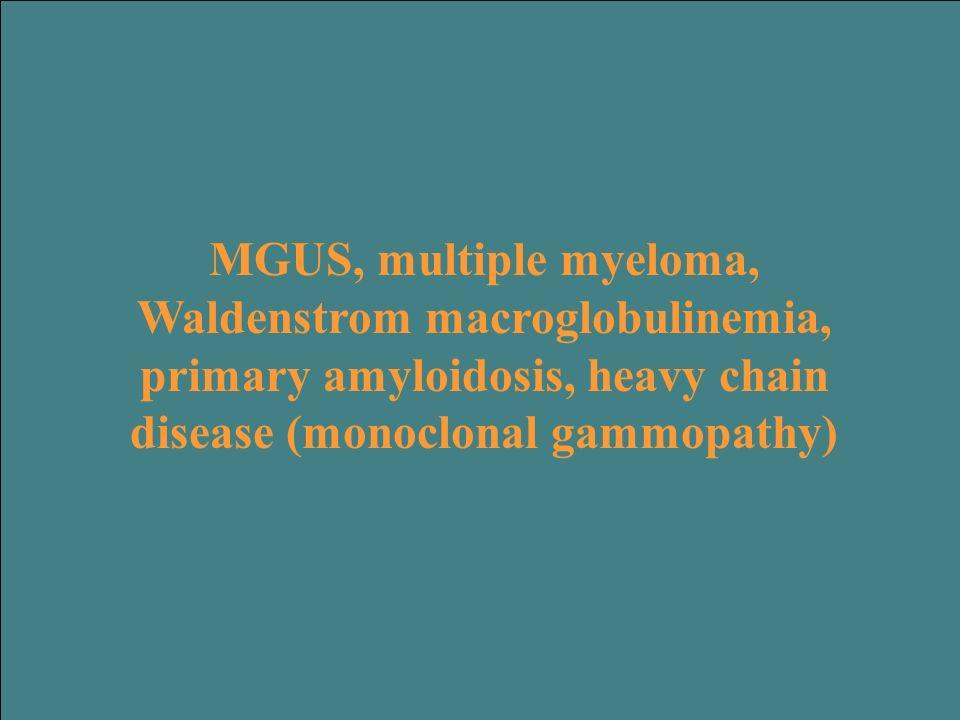 MGUS, multiple myeloma, Waldenstrom macroglobulinemia, primary amyloidosis, heavy chain disease (monoclonal gammopathy)