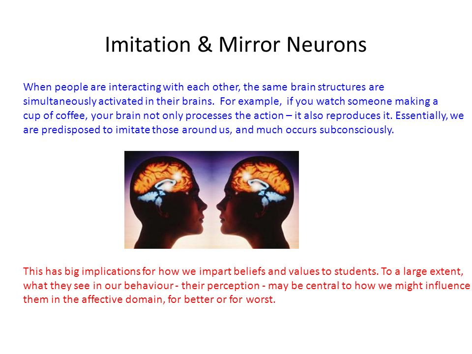 Imitation & Mirror Neurons