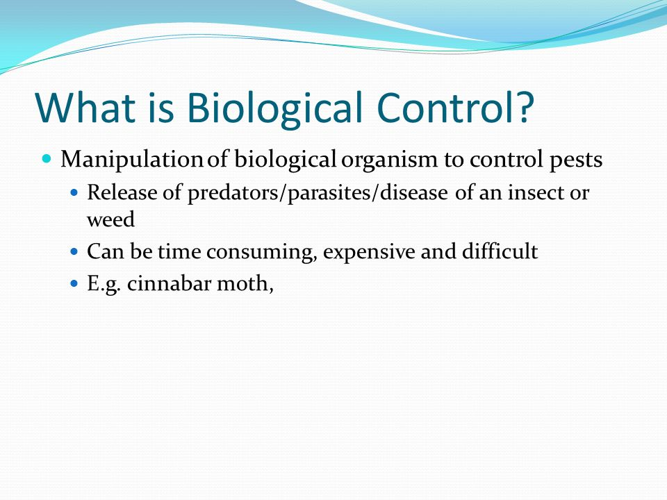 What is Biological Control