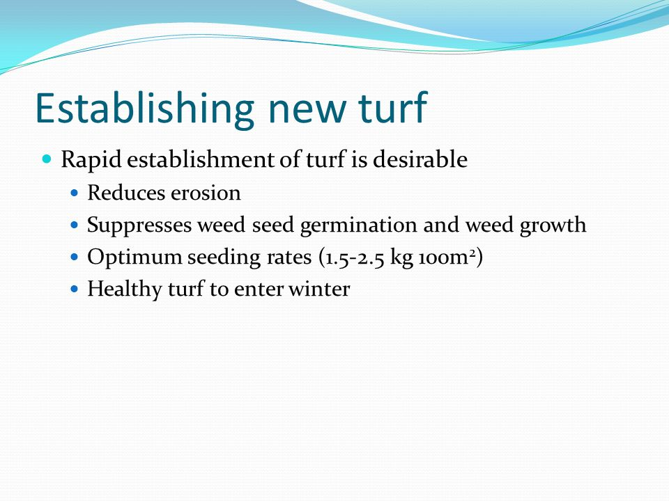 Establishing new turf Rapid establishment of turf is desirable