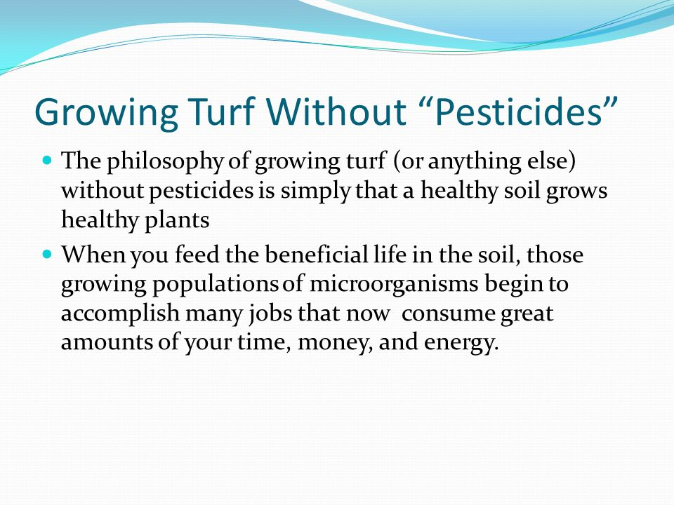 Growing Turf Without Pesticides