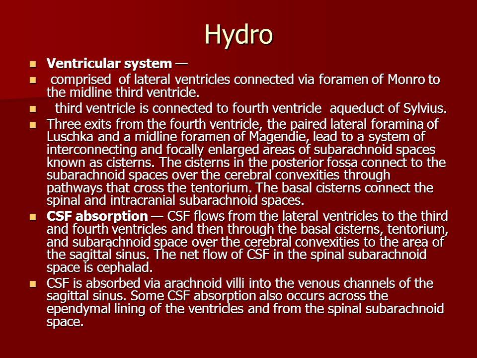 Hydro Ventricular system —