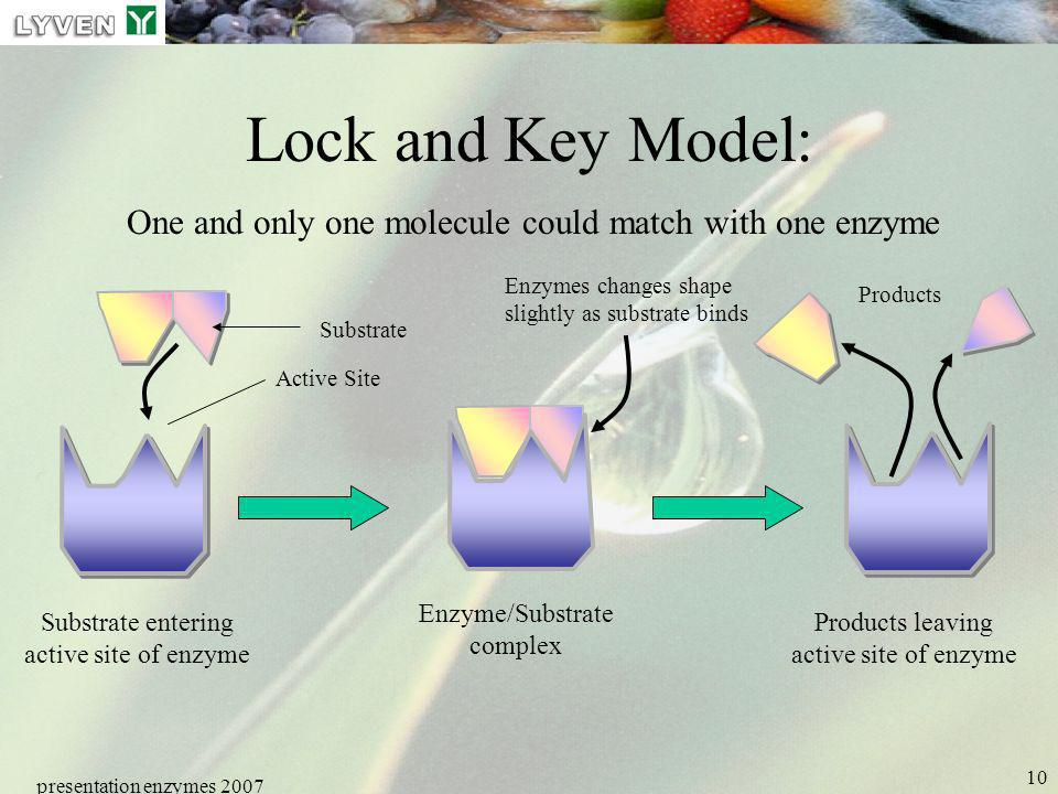 LYVEN Lock and Key Model: One and only one molecule could match with one enzyme. Enzymes changes shape slightly as substrate binds.