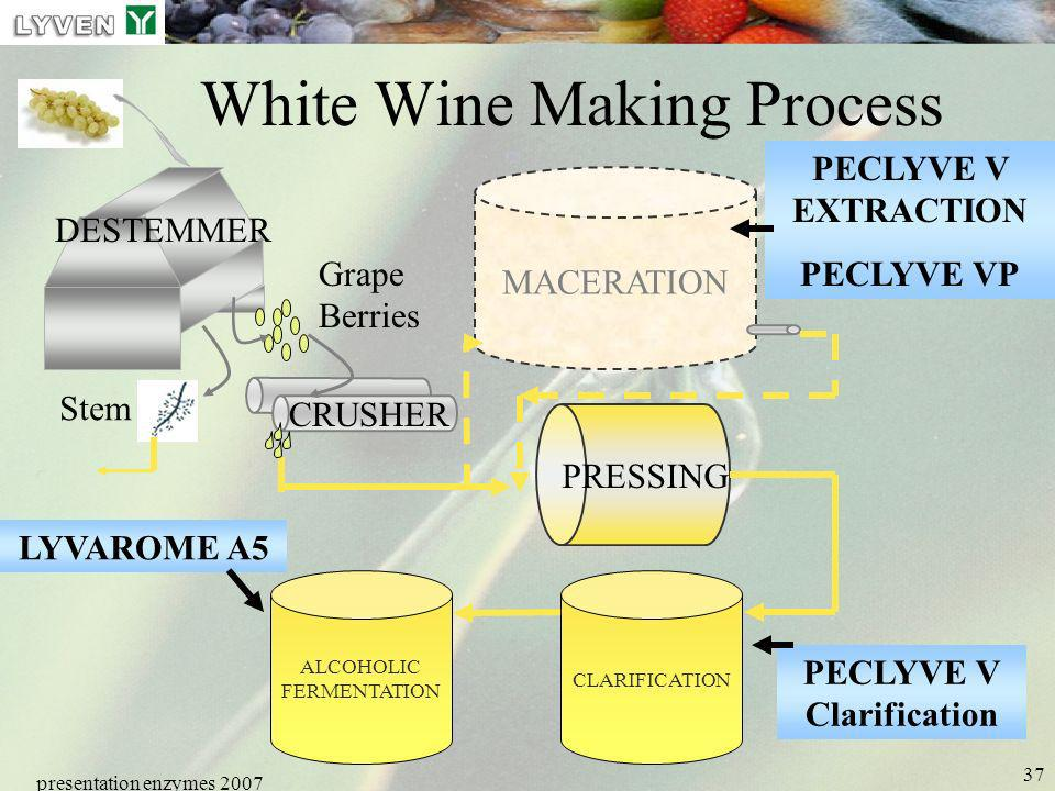White Wine Making Process