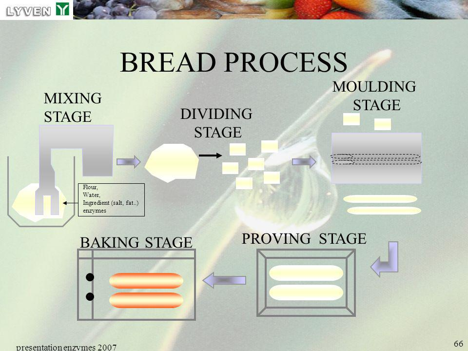 BREAD PROCESS MOULDING STAGE MIXING STAGE DIVIDING PROVING STAGE