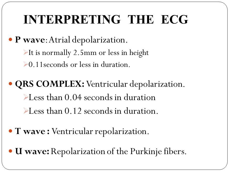 INTERPRETING THE ECG P wave: Atrial depolarization.