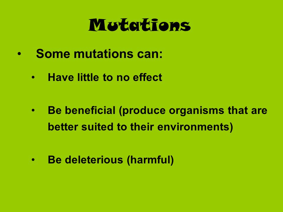 Mutations Some mutations can: Have little to no effect