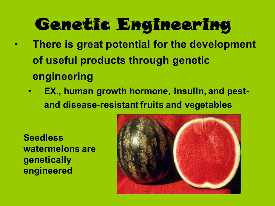 Genetic Engineering There is great potential for the development of useful products through genetic engineering.