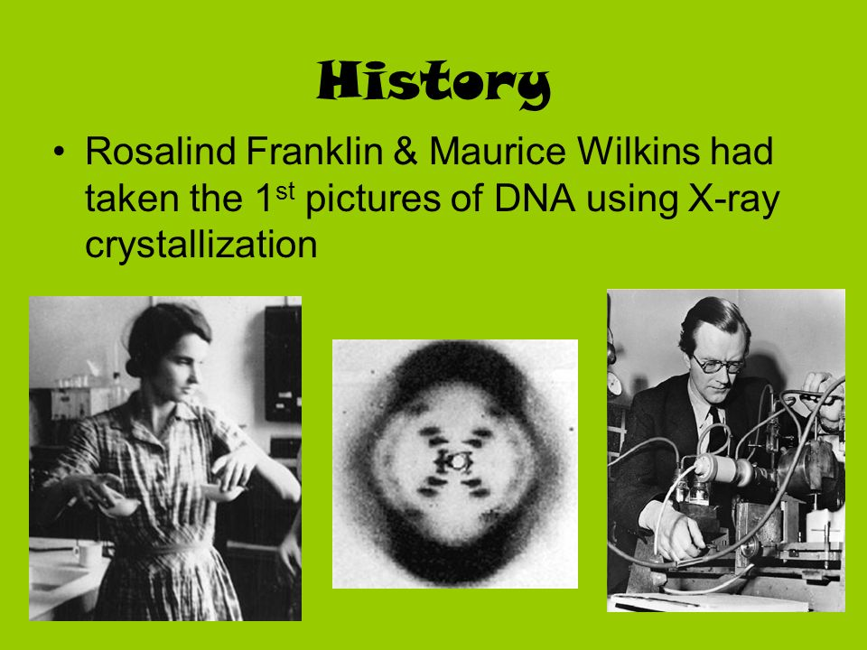 History Rosalind Franklin & Maurice Wilkins had taken the 1st pictures of DNA using X-ray crystallization.