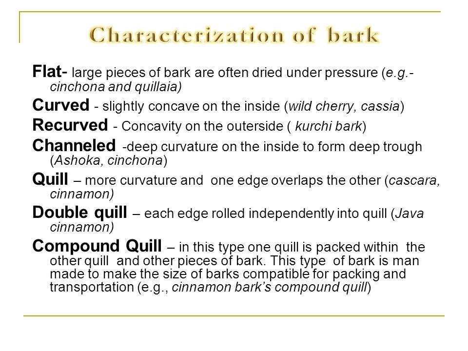 Characterization of bark
