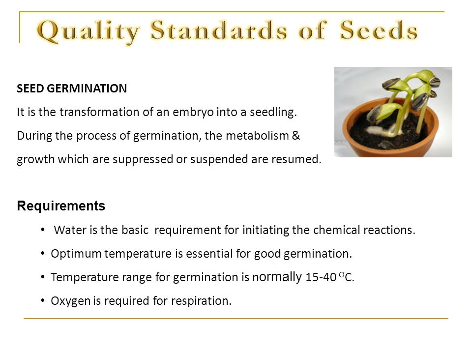 Quality Standards of Seeds