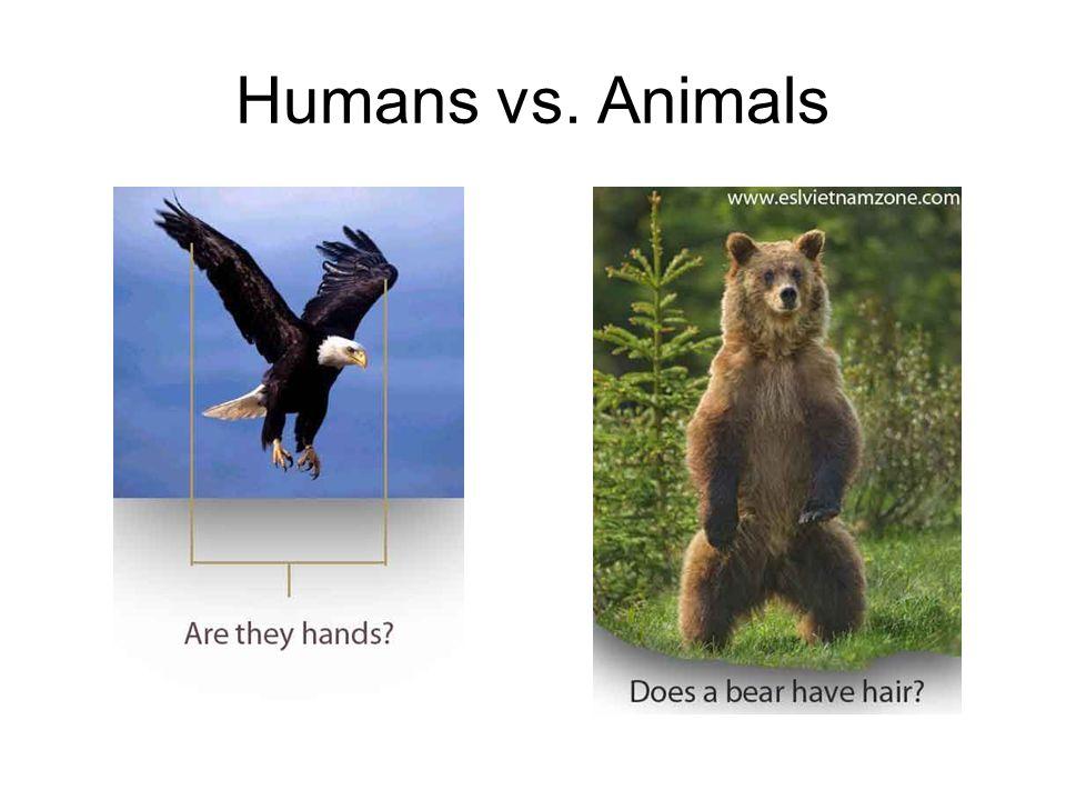 Humans vs. Animals