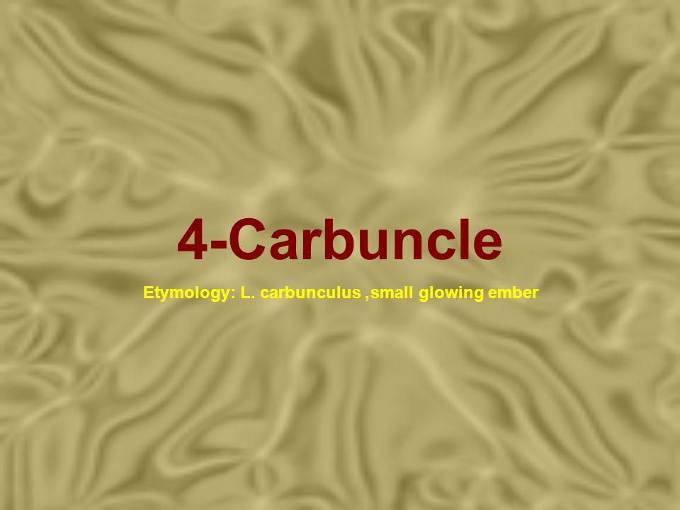 4-Carbuncle Etymology: L. carbunculus, small glowing ember