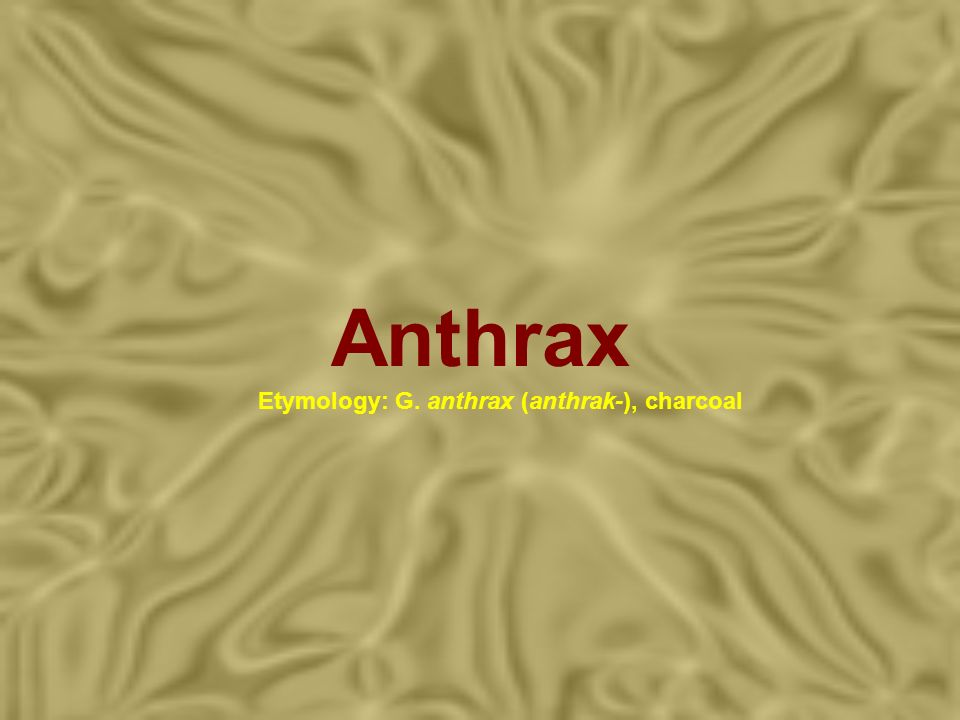 Anthrax Etymology: G. anthrax (anthrak-), charcoal