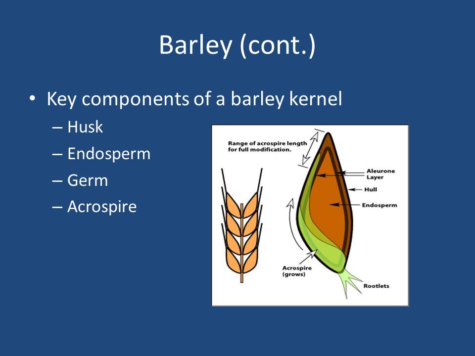Barley (cont.) Key components of a barley kernel Husk Endosperm Germ