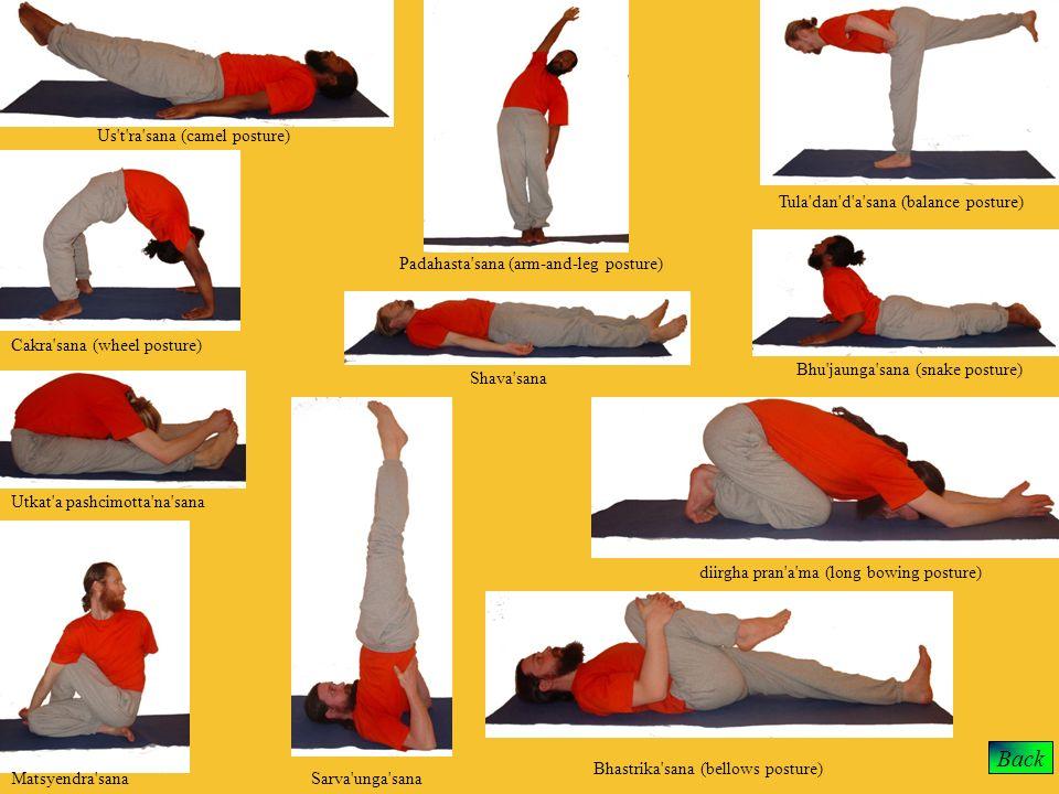 Back Us t ra sana (camel posture) Tula dan d a sana (balance posture)