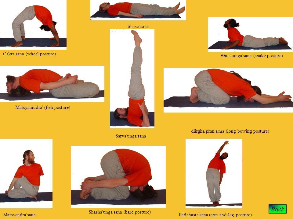 Back Shava sana Cakra sana (wheel posture)