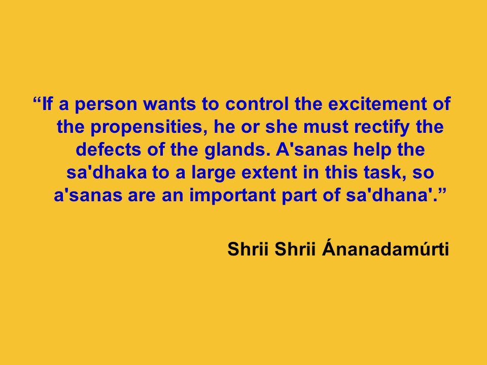 Shrii Shrii Ánanadamúrti