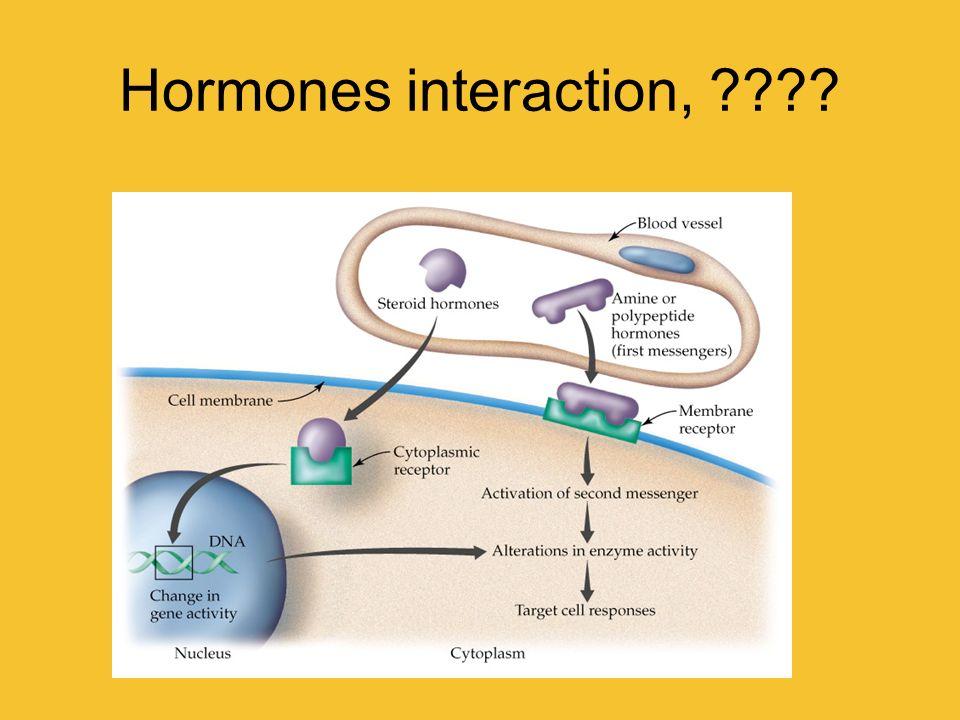 Hormones interaction,