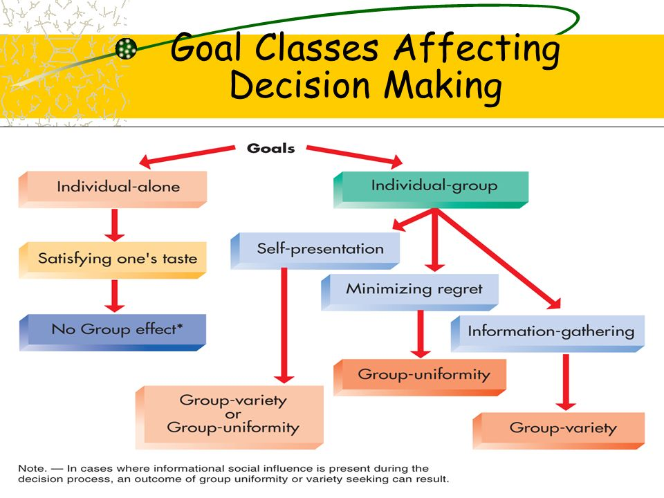 Goal Classes Affecting Decision Making