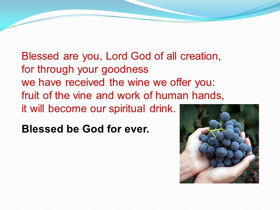 Blessed are you, Lord God of all creation,