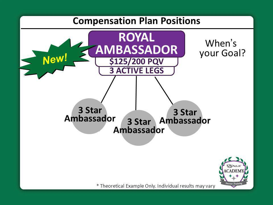 Compensation Plan Positions