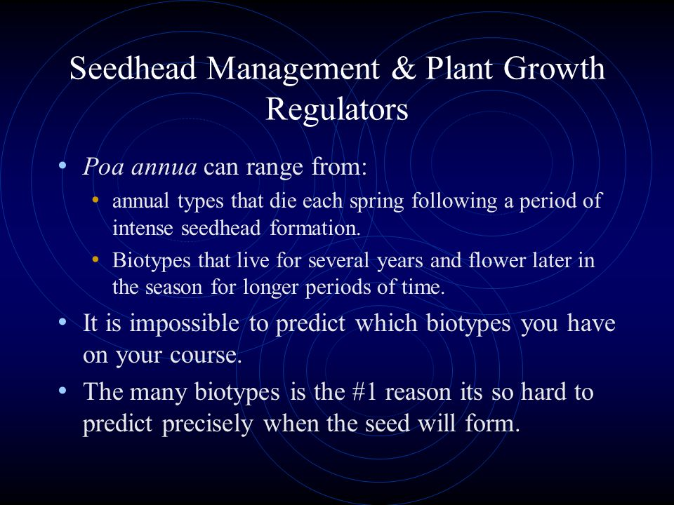 Seedhead Management & Plant Growth Regulators