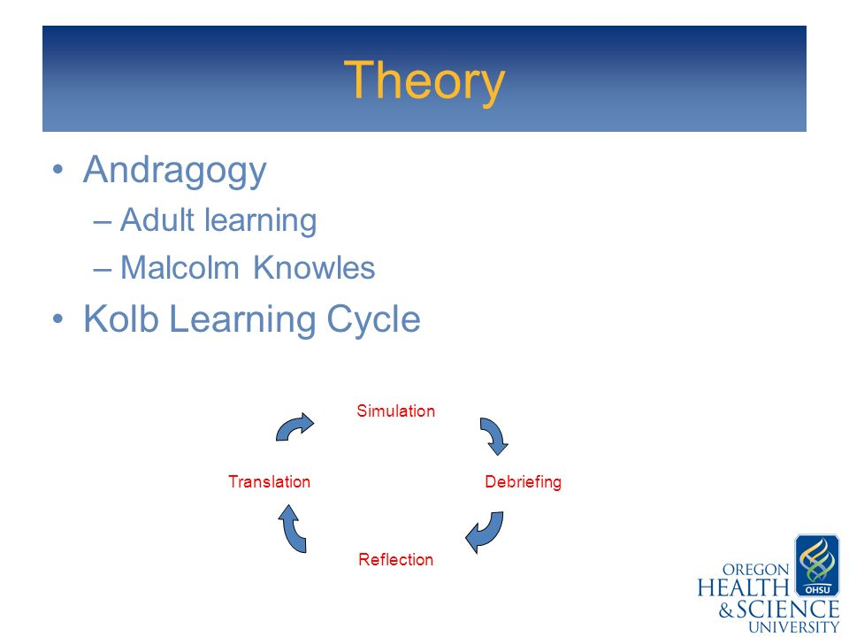 Theory Andragogy Kolb Learning Cycle Adult learning Malcolm Knowles