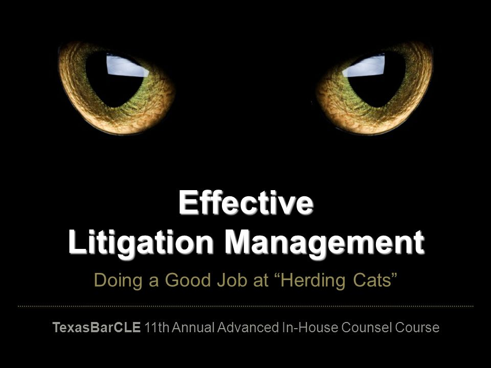 Effective Litigation Management